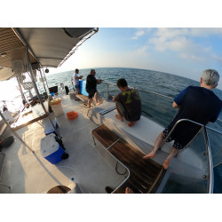 דייג מסירה בתשלום